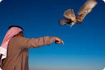 شکار پرنده یا انسان؛ قطری ها در افغانستان چه می کنند؟