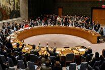 اعضای جدید شورای امنیت سازمان ملل انتخاب شدند