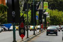 بیش از ۲۳ هزار مترمربع سیاهپوشانی در سطح شهر اجرا شده است