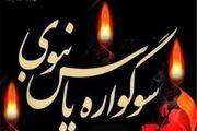 برگزاری سوگواره یاس نبوی در 350 امامزاده شاخص در استان اصفهان