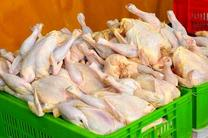 قیمت مرغ در بازار افزایش یافت