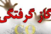 گازگرفتگی 15 نفر در البرز