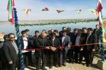 افتتاح 2 طرح شیلات در قصرشیرین /قصرشیرین تنها مرکز فعال کشور در زمینهٔ تکثیر میگوی آب شیرین شد
