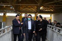 سالن دو و میدانی اردبیل تا هفته دولت به بهره برداری می رسد