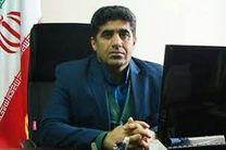 توقیف بار قاچاق گوشی تلفن همراه در کردستان