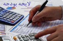 کرباسیان بر تهاتر بدهی دولت و بخش خصوصی در بودجه ۹۷ تاکید کرد