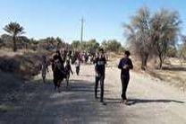 برگزاری همایش پیاده روی خانوادگی در بخش توکهور
