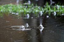 تداوم بارش رگباری در استان اصفهان
