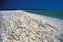 بندرلنگه؛ عروس بندرهای خلیج فارس