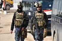 دستگیری 186 عضو داعش در عراق