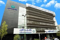 برترین های شعب، مدیریت شعب استان ها و واحدهای ستادی منتخب بانک توسعه تعاون معرفی شدند