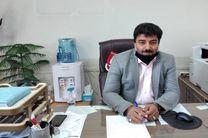 رتبه اول شهرستان نجف آباد در تولید تجهیزات زنبور داری در کشور
