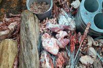 کشف یک تن و ۲۹۰ کیلو گوشت فاسد در اردبیل