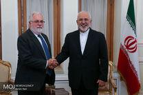 دیدار محمد جواد ظریف با میگل آریاس کانیته، کمیسیونر انرژی اتحادیه اروپا
