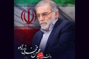 پیام تسلیت جشنواره مقاومت به مناسبت شهادت دانشمند برجسته اتمی