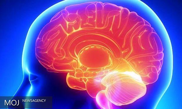 مغز راحین حل مسایل ریاضی تماشا کنید