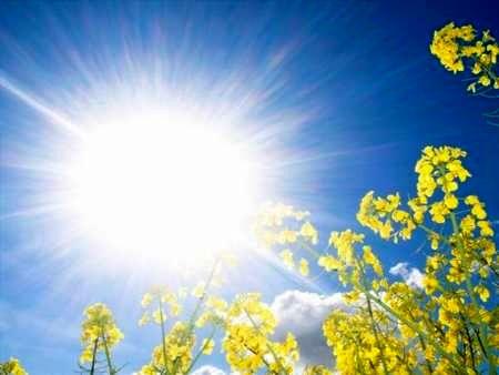 افزایش 3 تا 5 درجه ای دمای هوا در اصفهان