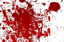 قاتل فراری قبل از اقدام به خودکشی دستگیر شد