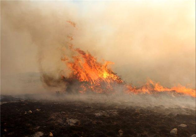 11 نقطه جنگلی در شهرستان کلاله دچار حریق شدند