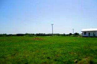 4 هکتار زمین برای اسکان خانوارهای روستای وحدت ایجاد شد