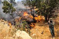 آتش سوزی در جنگل های بلوط بخش الوار اندیمشک