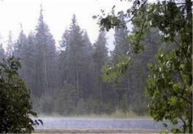 دمای هوای مازندران 10 درجه کاهش می یابد/ باغداران نگران نباشند