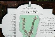 پنجمین بوستان بانوان در تهران افتتاح شد