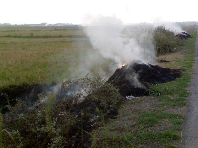 الودگی هوا در نتیجه سوزاندن ضایعات کشاورزی از جمله معضلات عمده محیط زیستی استان  است