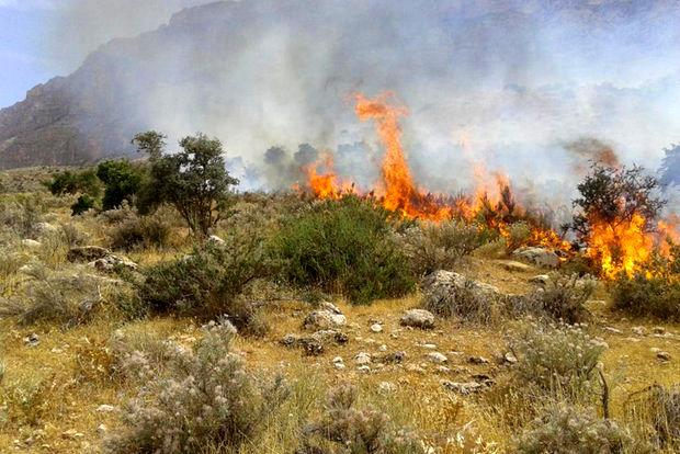آتش سوزی پیاپی در تپه صیادشیرازی گرگان/ احتمال عمدی بودن حریق