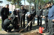 غرس چند اصله نهال در محوطه ستاد فرماندهی نداجا به مناسبت روز درختکاری