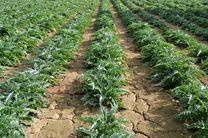 اعتبارات صندوق تعاون روستایی در بخش کشاورزی هدفمند شده است