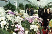 جشنواره ملی و نمایشگاه گل های ارکیده در نوشهر برگزار می شود