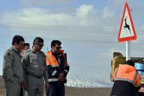 تابلوهای هشدار عبور حیوانات وحشی در محورهای مواصلاتی شهرستان دلفان نصب شد