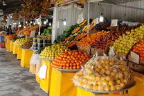 امسال سال ارزانی میوه است/٢هزار و ٣٠٠ هکتار سطح زیر کشت تولیدات گل و گیاه