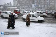 پیش بینی بارش برف در ۴ استان کشور / اخطاریه هواشناسی