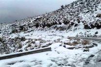 مسیرهای بخش شهیون به دلیل بارش برف مسدود شد