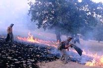 آتش سوزی جنگلهای باشت پس از سه روز ادامه دارد