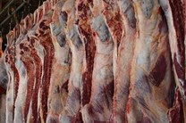 33 تن گوشت احتکاری در بندرعباس کشف شد
