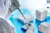 ثبت 17 ابتلای جدید به ویروس کرونا در اردستان