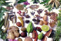 روش آفتاب خشک، ماده موثره گیاهان دارویی را سه برابر کاهش می دهد
