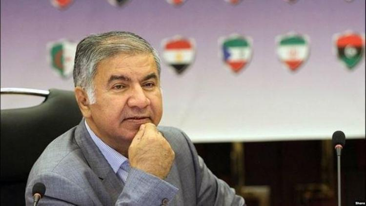نماینده ایران در اوپک در گذشت