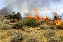 آتش سوزی در منطقه کولغان شهرستان بندرعباس مهار شد
