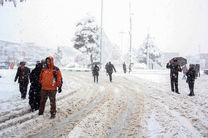 بارش برف برخی از مدارس استان لرستان را تعطیل کرد